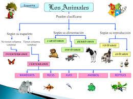 OS SERES VIVOS: OS ANIMAIS